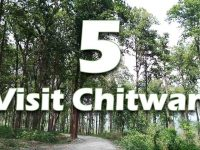 Top five places to visit in Chitwan