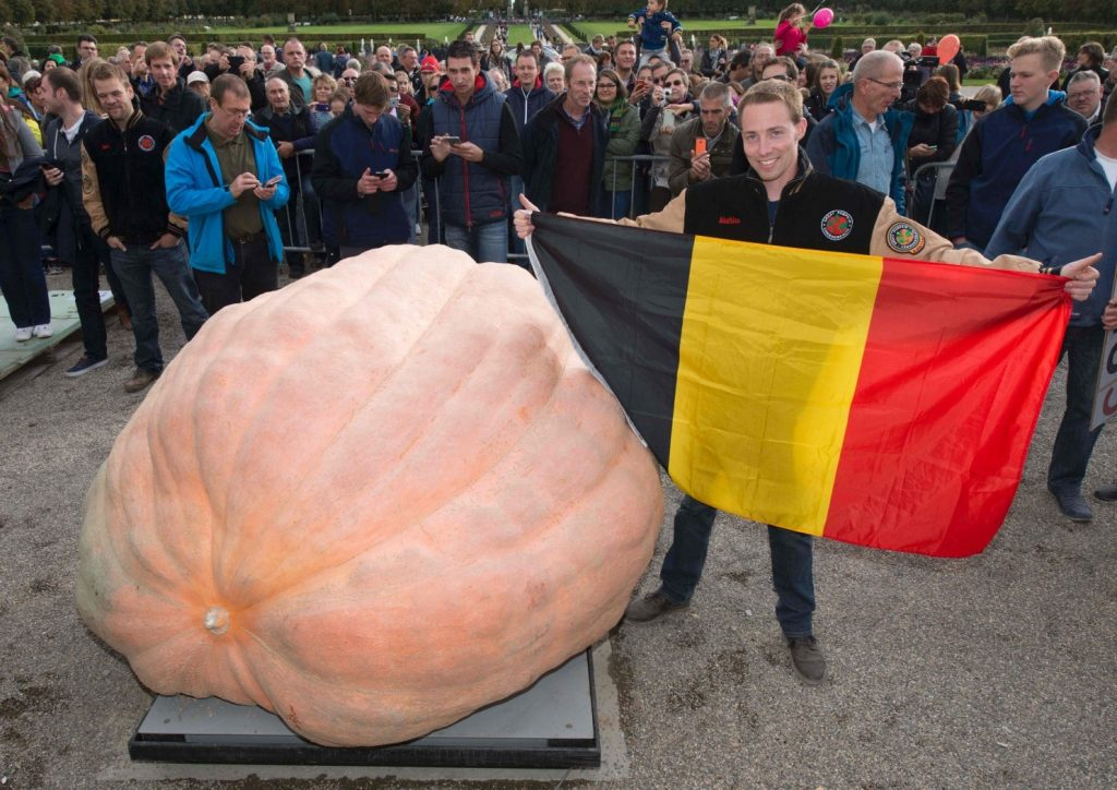 heaviest pumpkin in the world